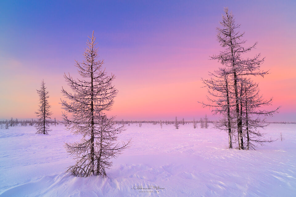 Winter sunrise landscape with glowing red sky