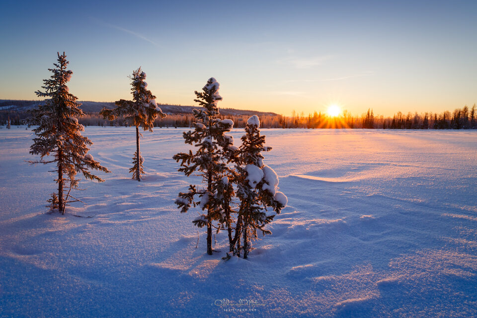 Winter Sunrise landscape